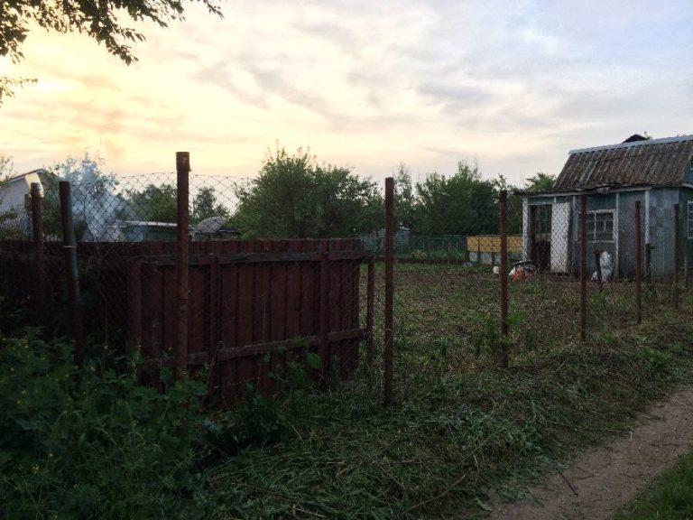 Расчистка участков от кустарников, деревьев и древесной поросли.