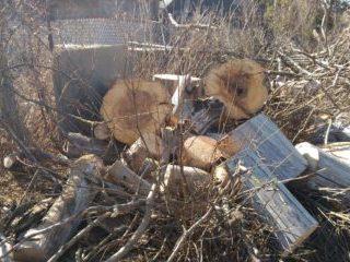 Финал процесса удаления аварийного дерева с применением автовышки, фрагментами с контролируемым сбросом. Село Чермошное.