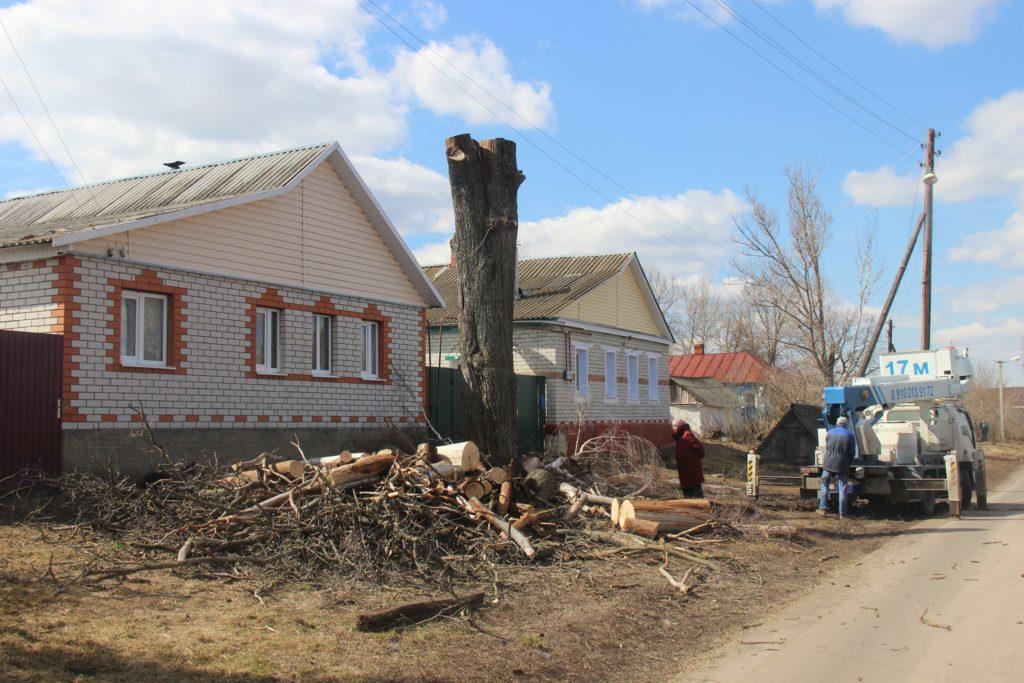 Процесс удаления засохшего вяза фрагментами с контролируемым сбросом, с помощью автовышки, рядом с ЛЭП и жилым домом. Село Чермошное.